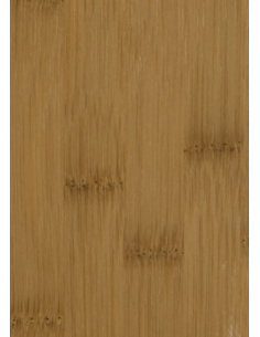 Bambus carmel szeroki